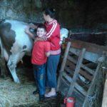 Luksemburg: Julska humanitarna akcija uspješno privedena kraju