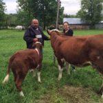 Luksemburg: Okončana aprilska akcija – Krava i tele predati porodici Ćatović (foto)
